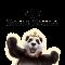 Jogue caça-níqueis da Play'n'Go no cassino online Royal Panda