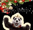 Recebe o bônus de Royal Panda cassino online de Natal!