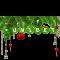 Celebre o natal com bônus do cassino online Unibet Brasil para jogo de pôquer
